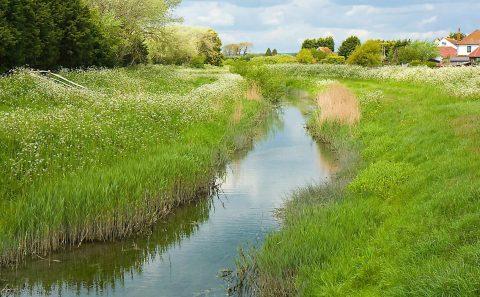 environmentallandscape