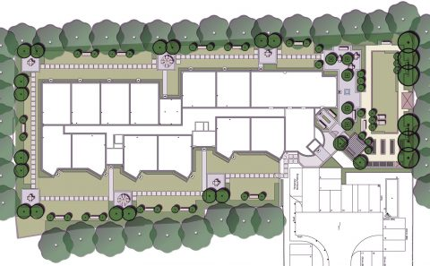 assisted living landscape (1)