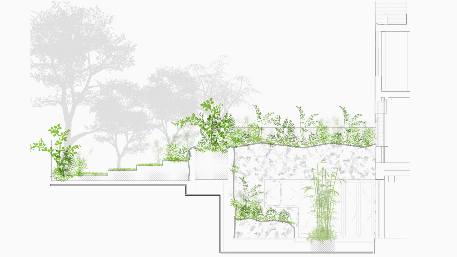 Hampstead Landscape Design and Planning